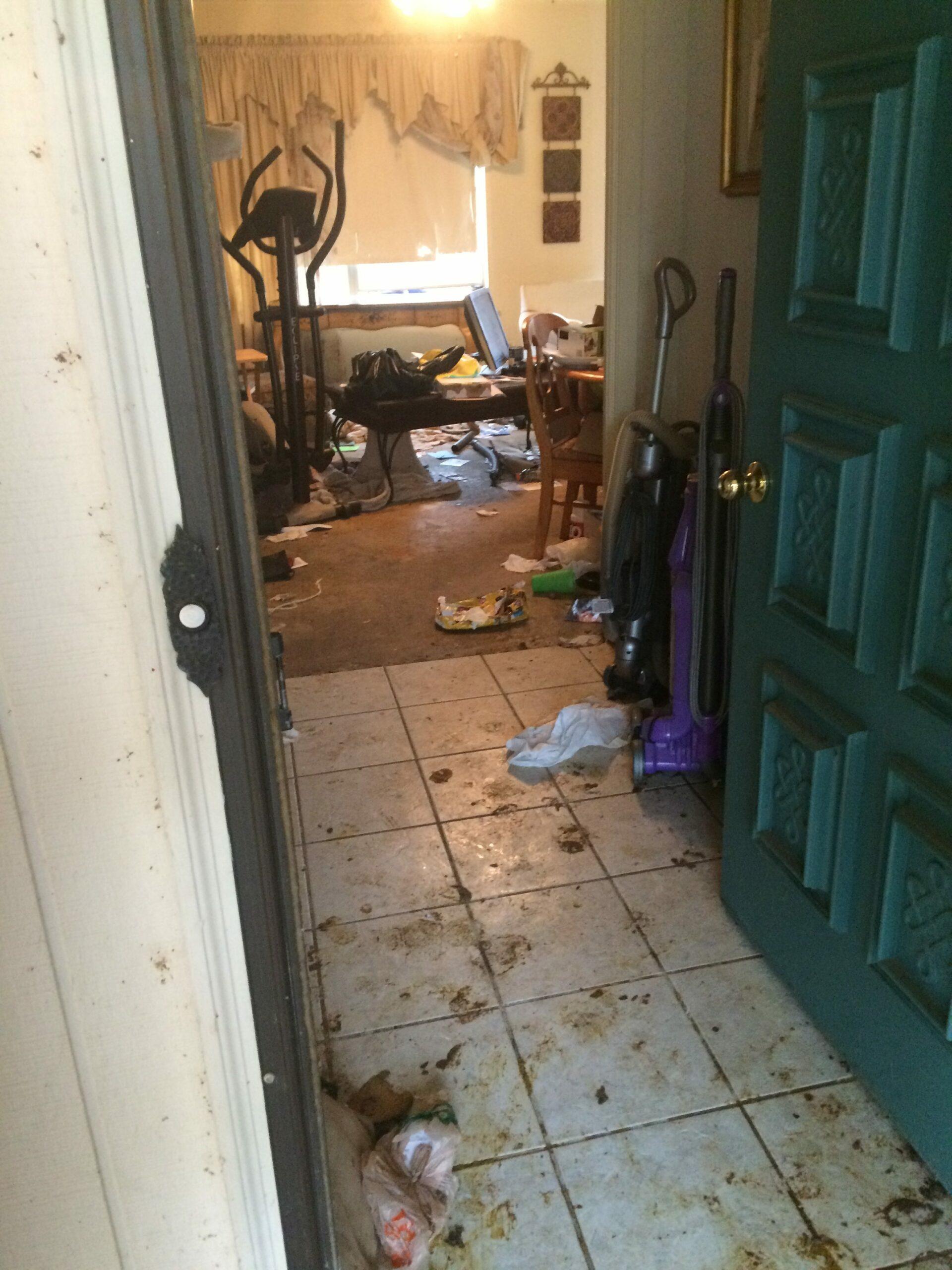 Arlington cat hoarder house entry before